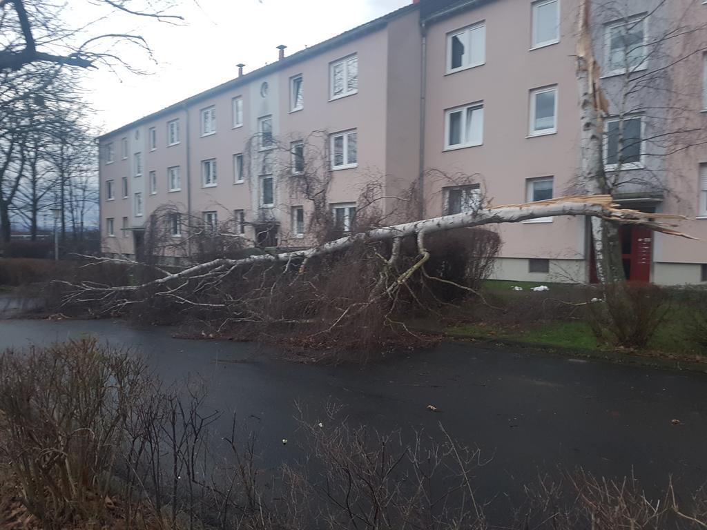 K1024_Frasenweg_18.01.2018